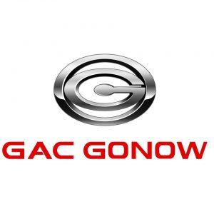 Certificate of conformity (COC) GONOW