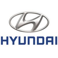 DATA SHEET (eCOC) HYUNDAI PROFESSIONAL