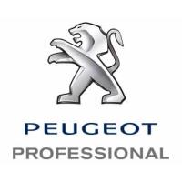 DATA SHEET (eCOC) PEUGEOT PROFESSIONAL